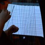 Auch seltener gespielte Instrumente wie hier die Harfe hatten ihren Solopart bei den Konzertstücken.